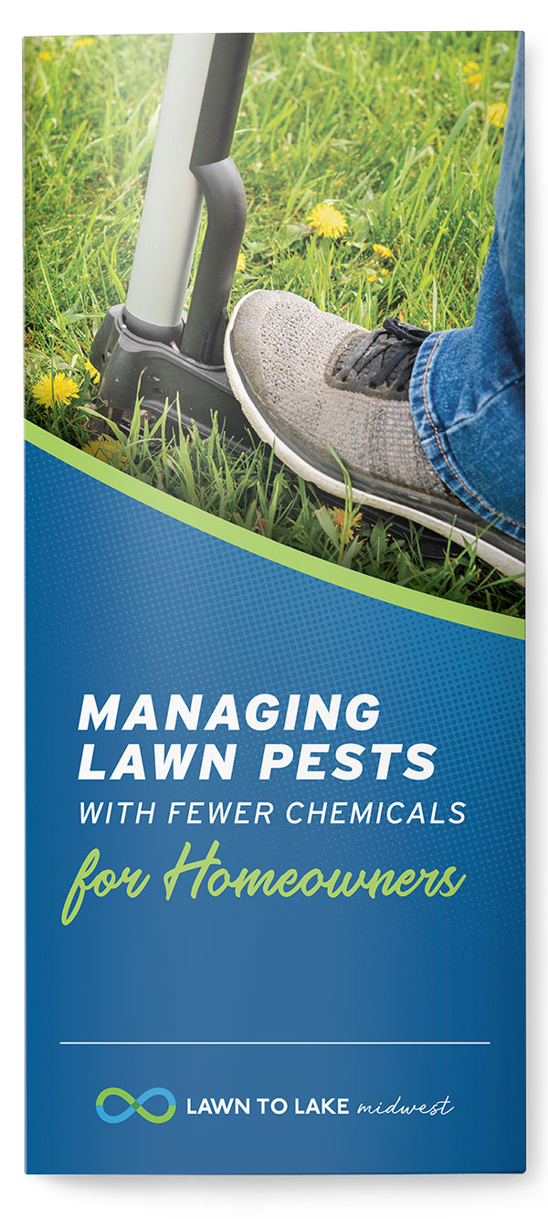 Managing Lawn Pests with Fewer Chemicals