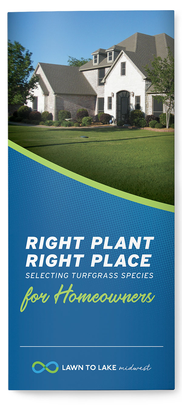 Right Plant, Right Place: Selecting Turfgrass for Homeowners