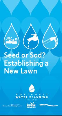 Seed or Sod? Establishing a New Lawn