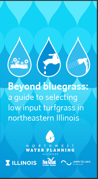 Beyond Bluegrass: A Guide to Selecting Low Input Turfgrass in Northeastern Illinois