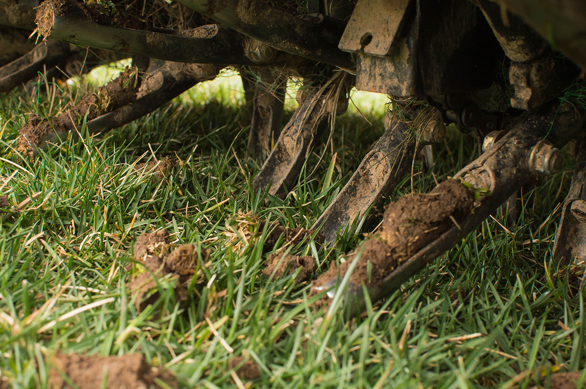 Close up of a core aerator removing plugs of soil from a lawn